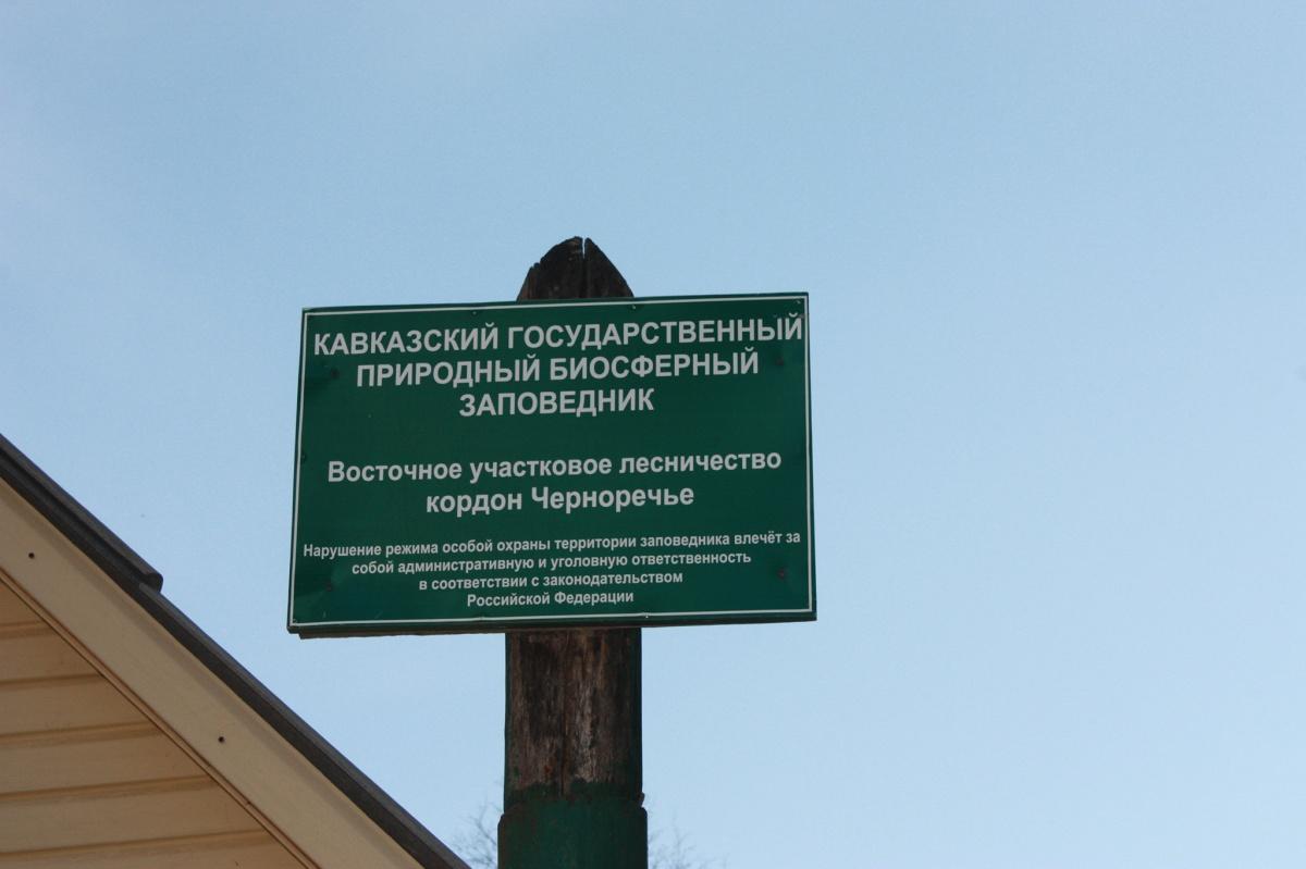 кордон черноречье фото дана граммах