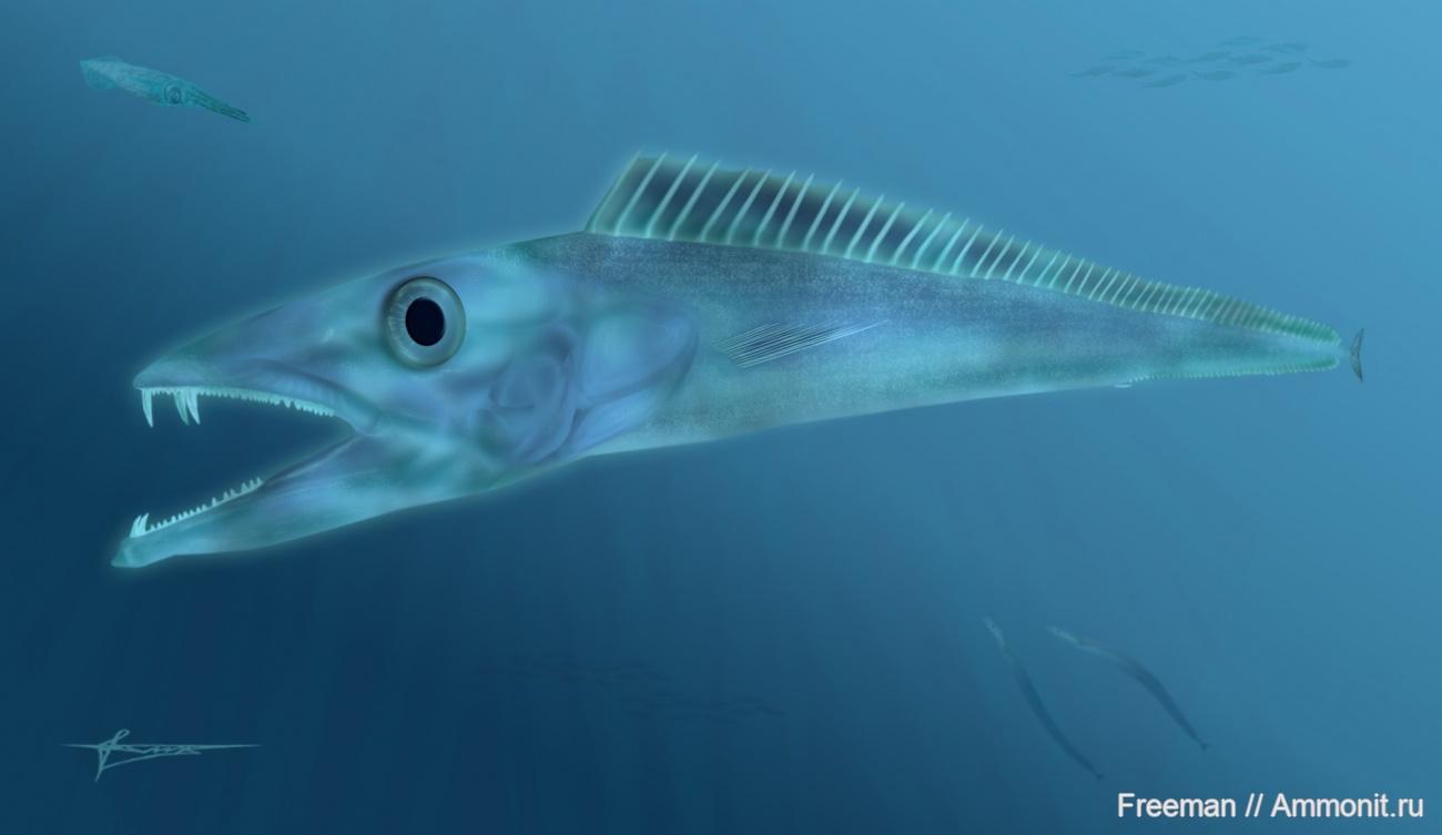 биографии рыба сабля картинки фото мамки шурыгиной
