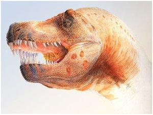 Тираннозавр болеет трихомонозом