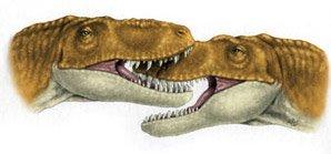 тираннозавр Джейн
