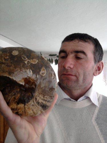 Kurbanic хаписов омар пятькопеяк у раина 2004 цена